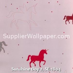 Sunshine Boy 2, SE-1804
