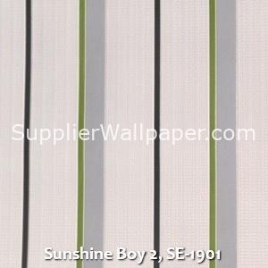 Sunshine Boy 2, SE-1901