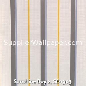 Sunshine Boy 2, SE-1903