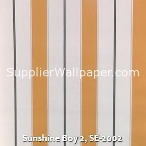 Sunshine Boy 2, SE-2002