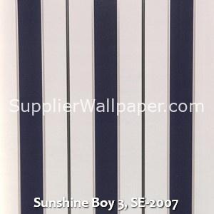 Sunshine Boy 3, SE-2007