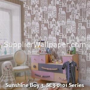Sunshine Boy 3, SE3-0101 Series