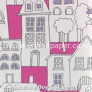 Sunshine Boy 3, SE3-0104