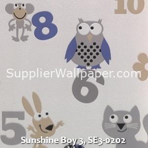 Sunshine Boy 3, SE3-0202
