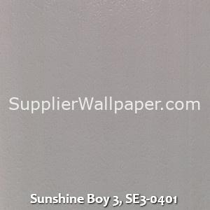 Sunshine Boy 3, SE3-0401