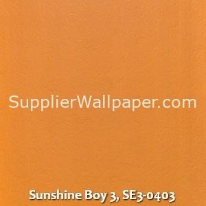 Sunshine Boy 3, SE3-0403