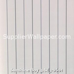 Sunshine Boy 3, SE3-0601