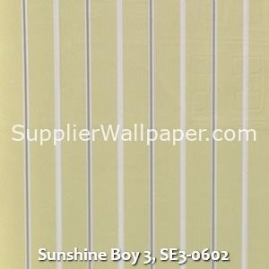 Sunshine Boy 3, SE3-0602