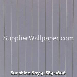 Sunshine Boy 3, SE3-0606