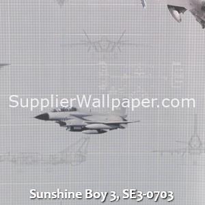 Sunshine Boy 3, SE3-0703