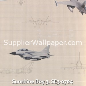 Sunshine Boy 3, SE3-0704