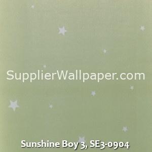 Sunshine Boy 3, SE3-0904