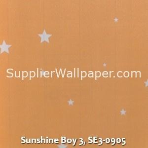 Sunshine Boy 3, SE3-0905
