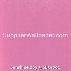 Sunshine Boy 3, SE3-1002