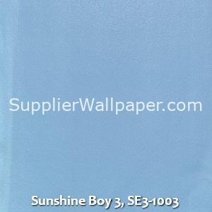 Sunshine Boy 3, SE3-1003