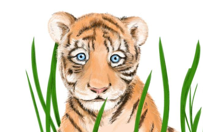 Timmy the Timid Little Tiger