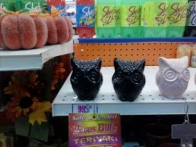 99only owl display