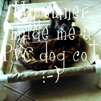 PVC dog cots - The DIY Girl