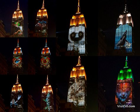 Endangered Animals on Empire State Building -006