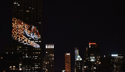 cheetah - as part of endangered animals light show at the Empire State Building -11
