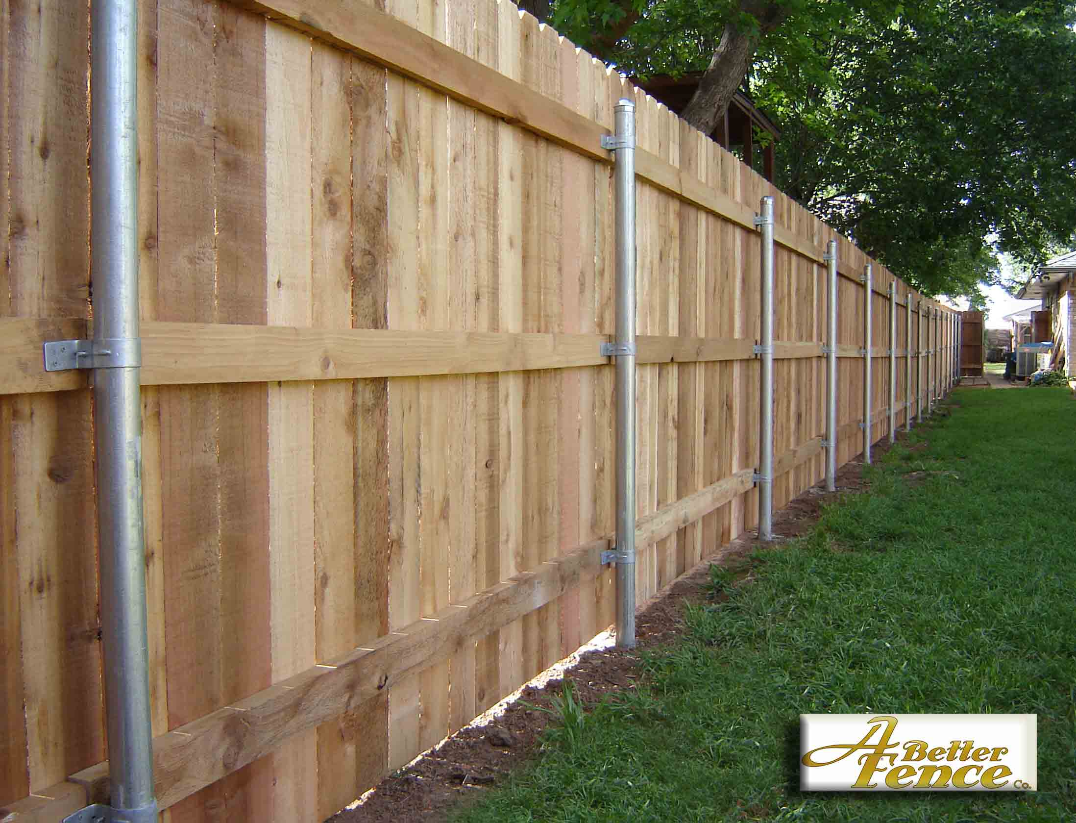 6 6 Fence Pickets X Cedar