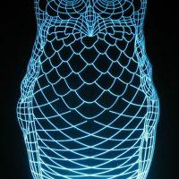 AD Laser Images - Owl 5
