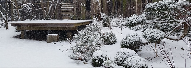 L'agora à travers les saisons : grosse neige