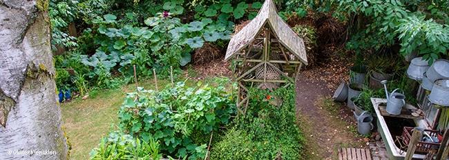 Vue plongeante sur le jardinet et l'aire de compostage envahie par les potimarrons