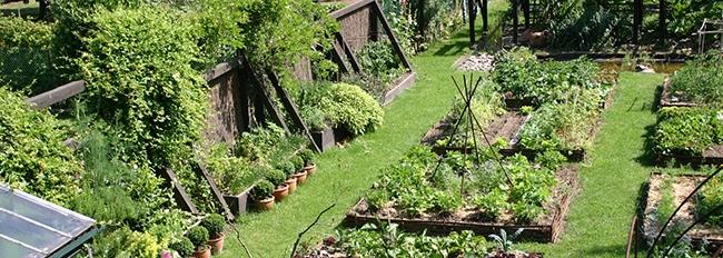 Vue plongeante sur le potager et les jardinières d'aromatiques