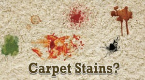 Carpets Get dirty stains
