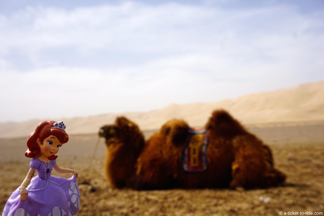 Mongolie, désert de Gobi