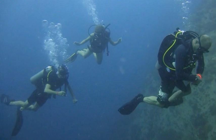 Thaïlande, Koh Tao, plongée sous-marine