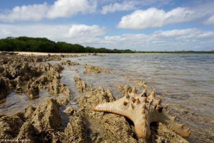 Nouvelle-Calédonie, plage de Nénon