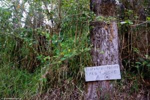 Nouvelle-Calédonie, Farino, propriété privée