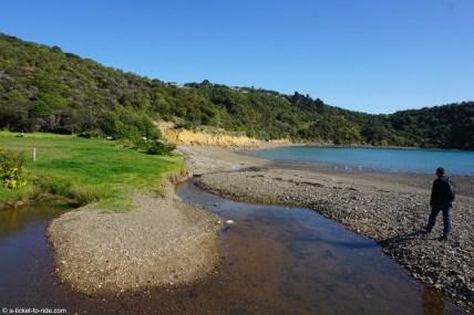 Nouvelle-Zélande, Waiheke island, Owhanake bay