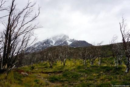 Chili, Torres del Paine, jour 1
