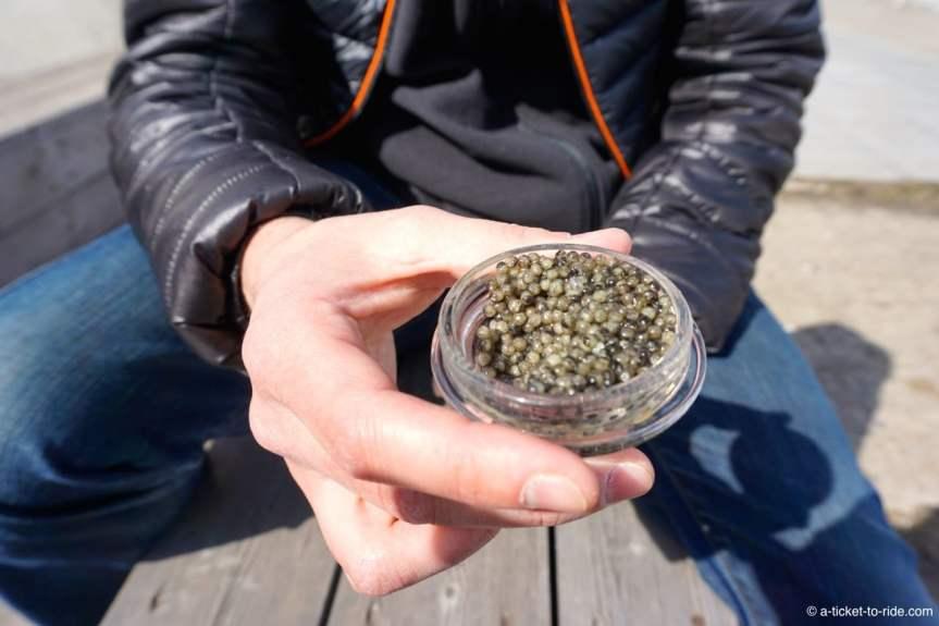 moscou-caviar