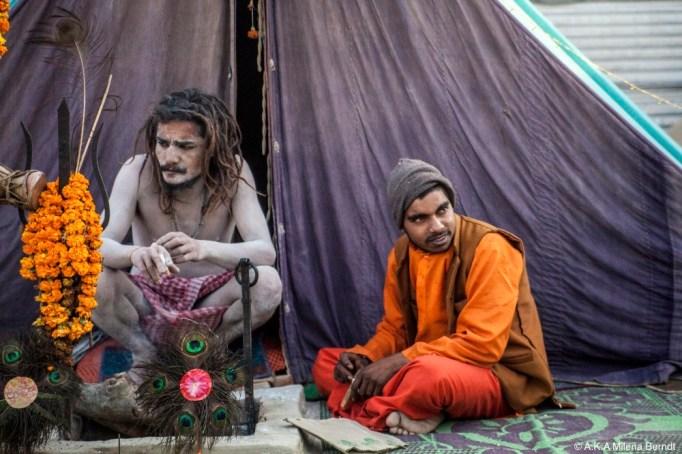 Inde-Khumbh Mela-sadhu