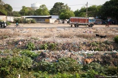 Inde, vue depuis le train