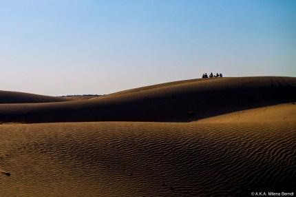 cinq expériences à vivre en Inde
