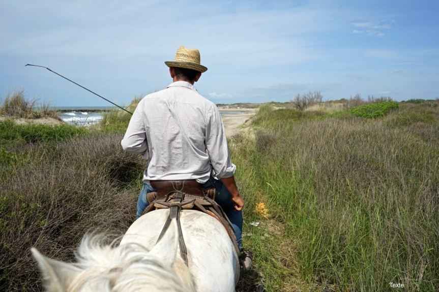 Camargue, balade à cheval