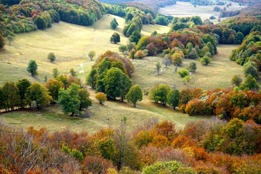 Ain, Plateau de Retord, automne