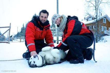 Laponie finlandaise, rencontre avec les chiens de traineau