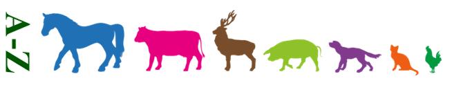 A-Z Hayvanlar