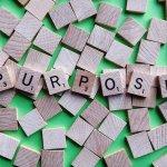 Purpose Intention Goal Mission  - Wokandapix / Pixabay