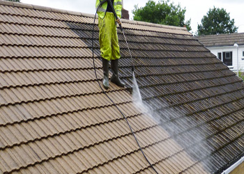Lapel Roof Cleaning