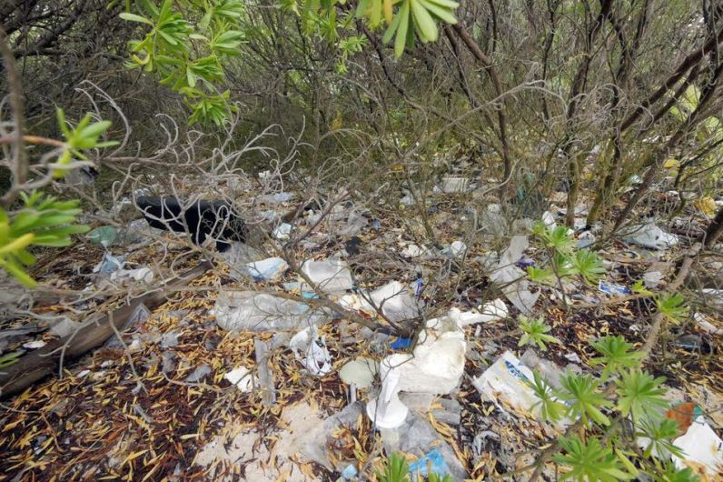 Estas islas tropicales ahora son contenedores de plástico