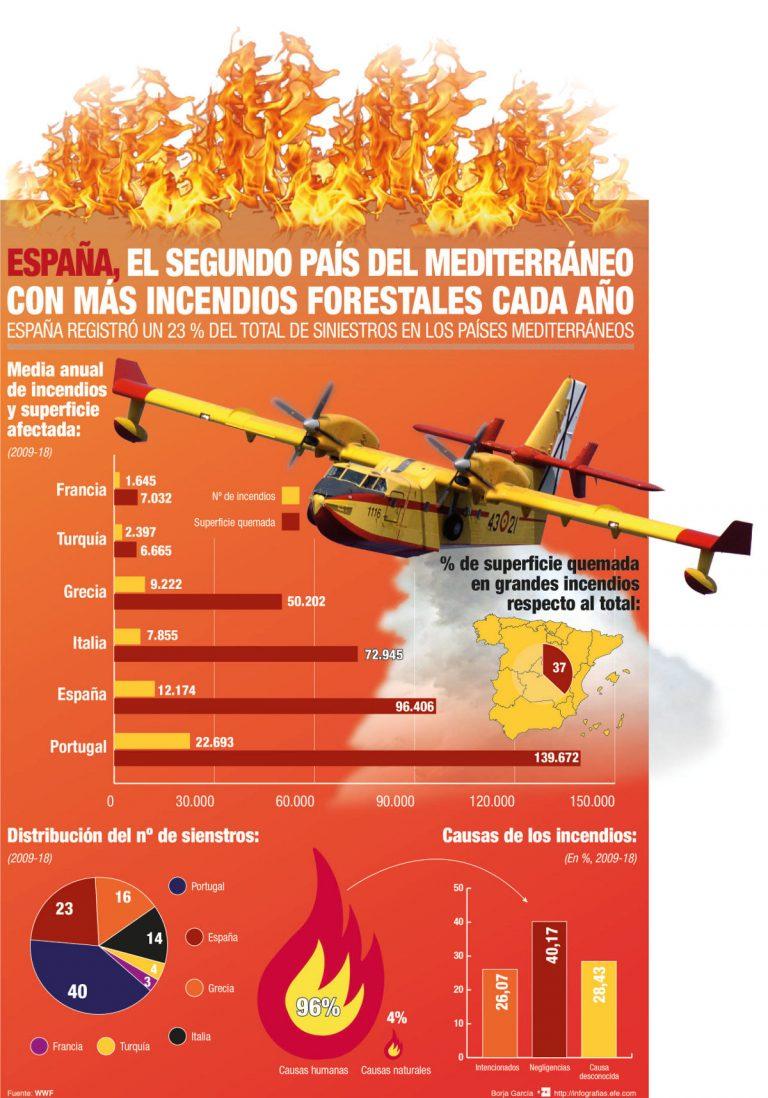 incendios-forestales-infografia-EFEverde-768x1098