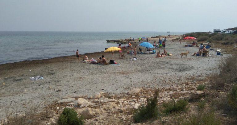 La playa para perros de Santa Pola es la mejor valorada de la provincia de Alicante