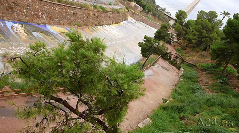 El temporal DANA en Elche arrasa con algunos árboles y palmeras